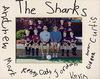 Sharks_small